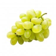 Винено грозде Култура