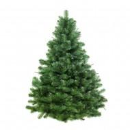 Коледни дръвчета Култура
